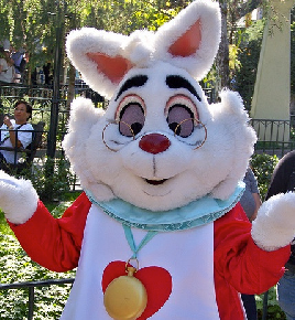 Disney Might Have A Racist White Rabbit On TheirHands